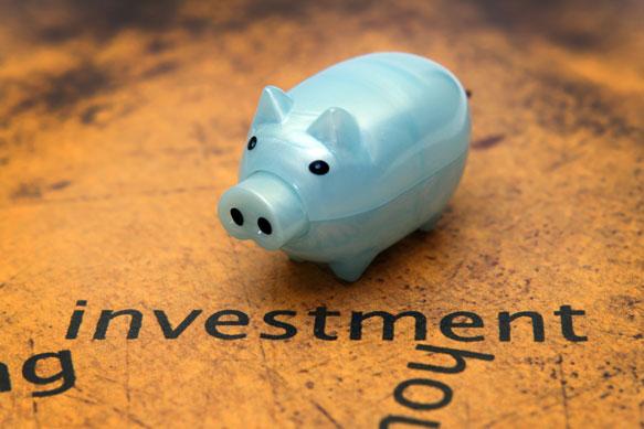 Investment-Pig