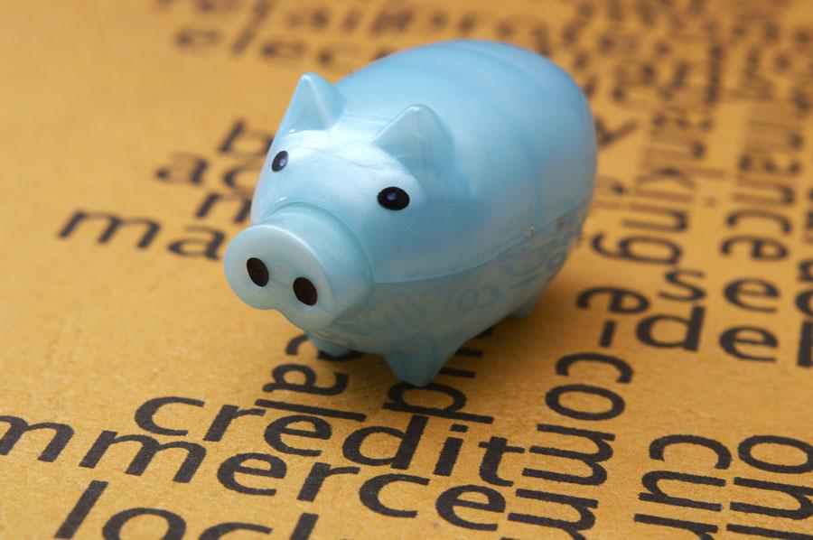 Piggy-Business